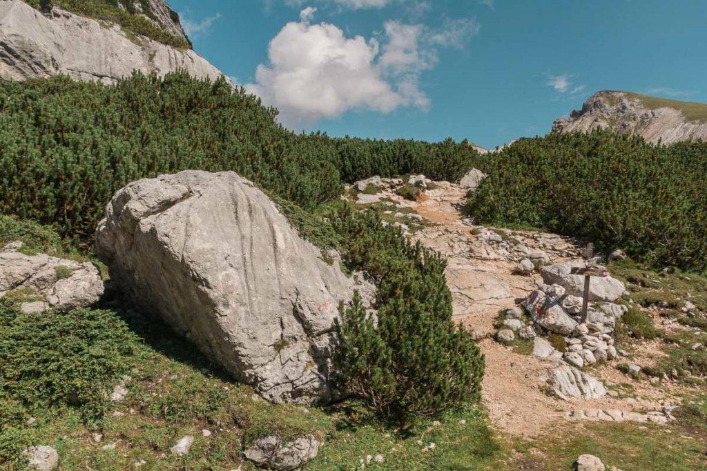 Bivio sul sentiero dell'Altavia