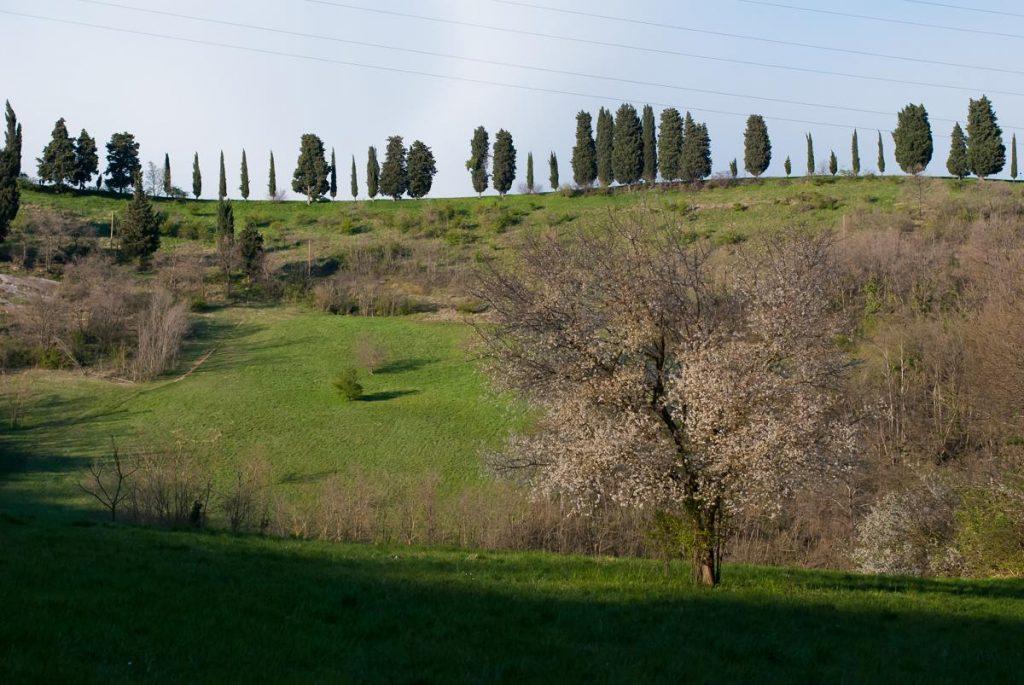Parco dei Gessi