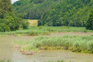 Lago Pratignano
