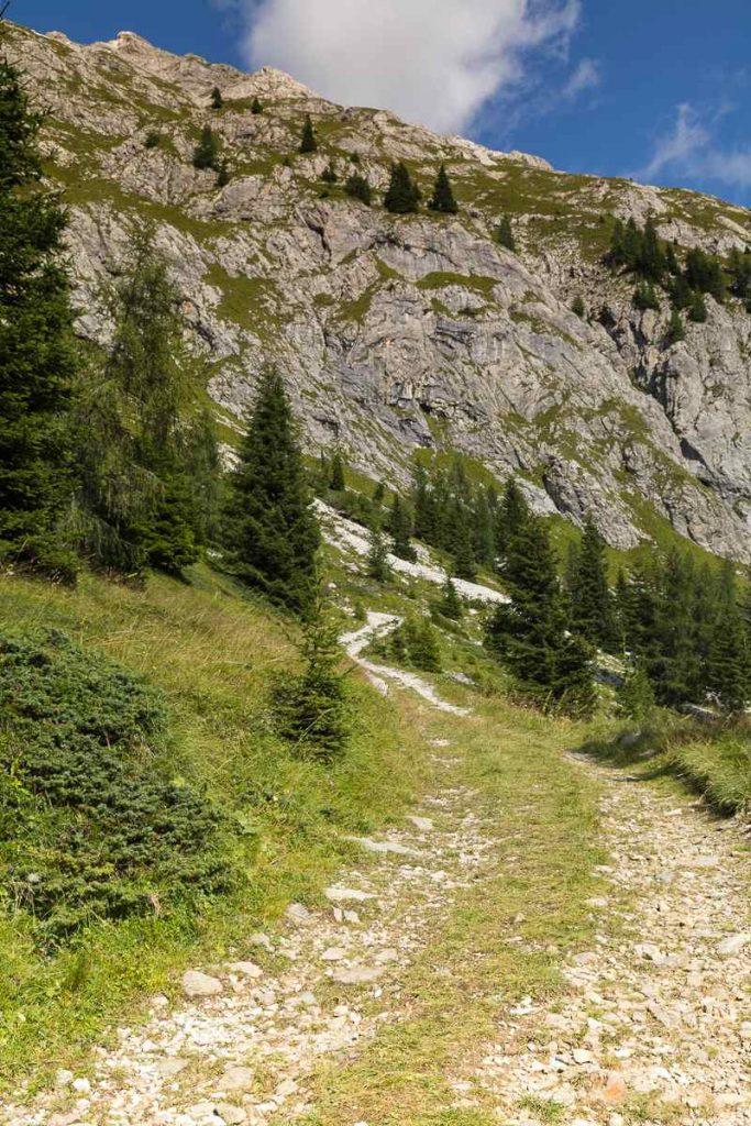 Strada per il passo