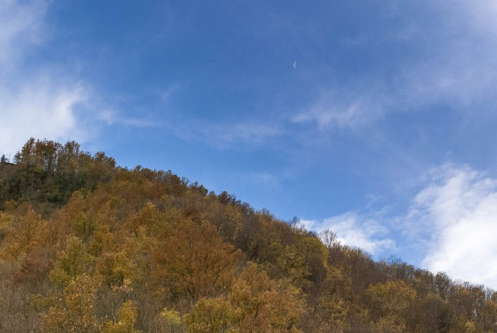 Cascata Acquacheta - bosco con luna