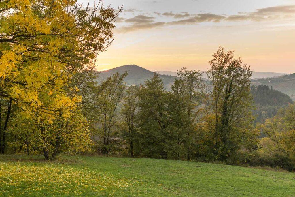 Colli bolognesi: Monte Donato