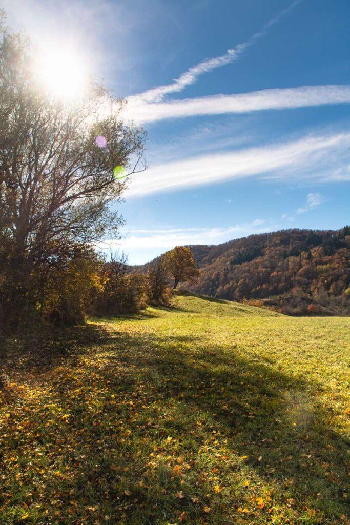 Sentiero al margine dei campi