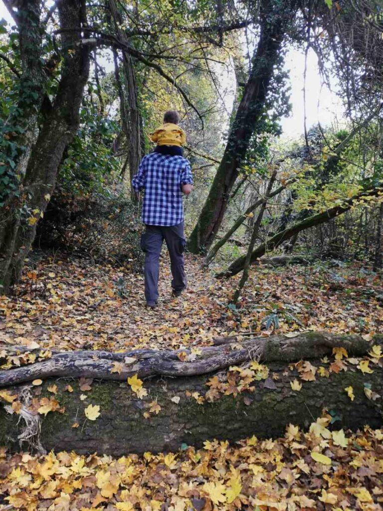 Nei boschi del Ravone